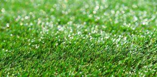 תחזוקה שוטפת של דשא סינטטי